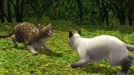 Sims 3 Warrior Cats Legacy Challenge Library – Tea Time