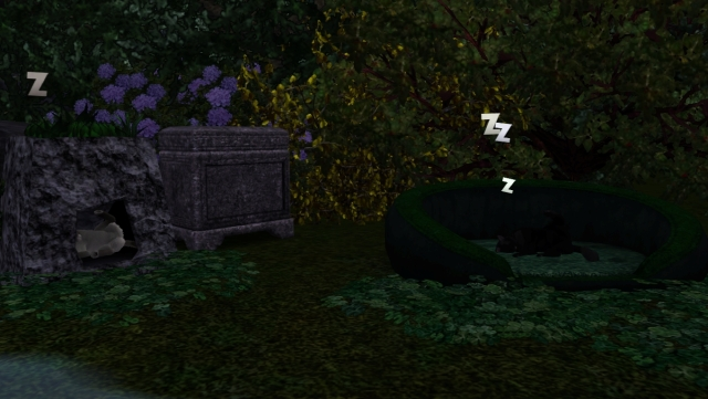 screenshot-794