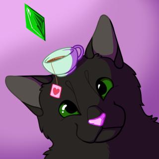 icon-cat